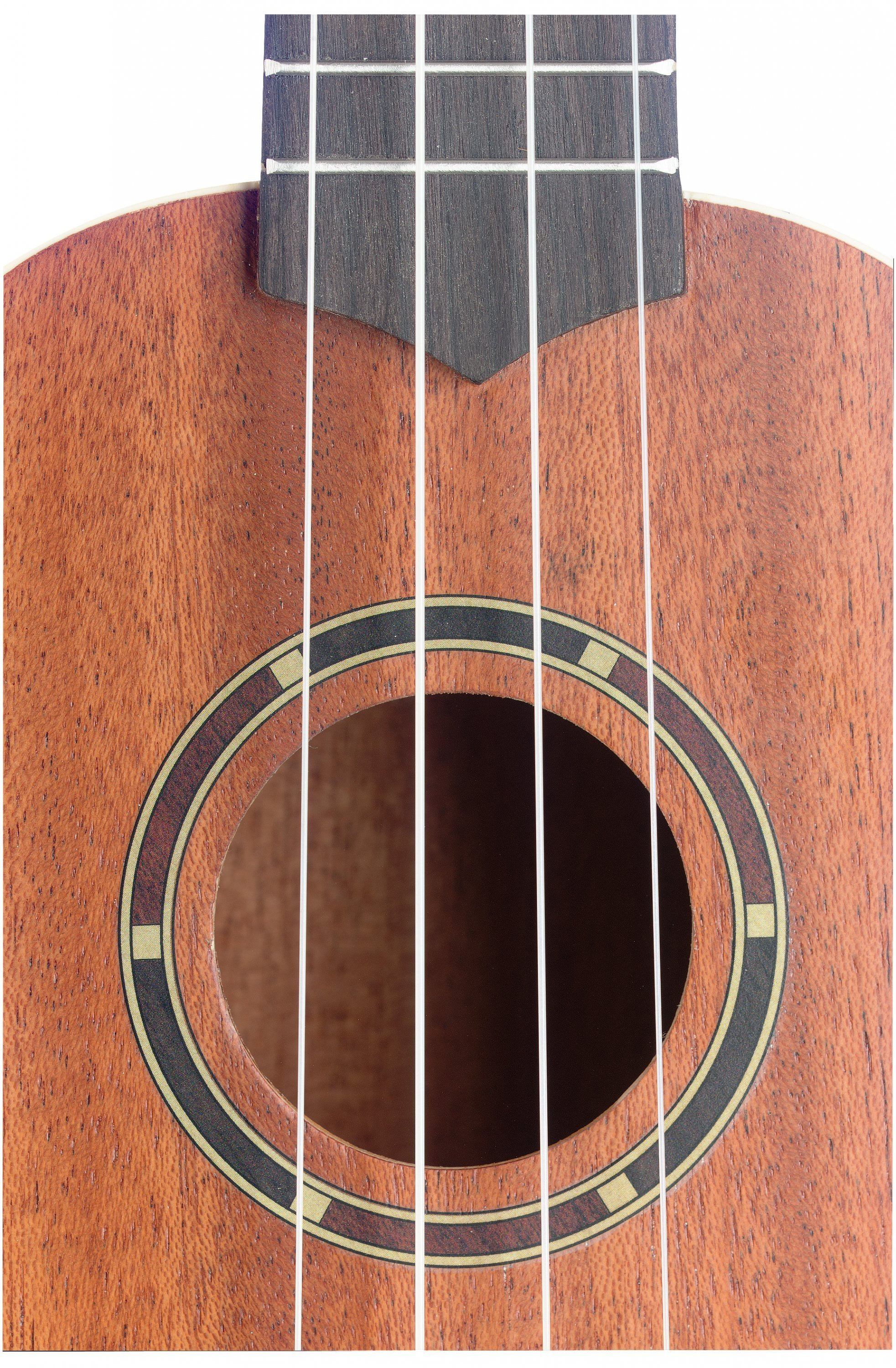 Stagg UC-30