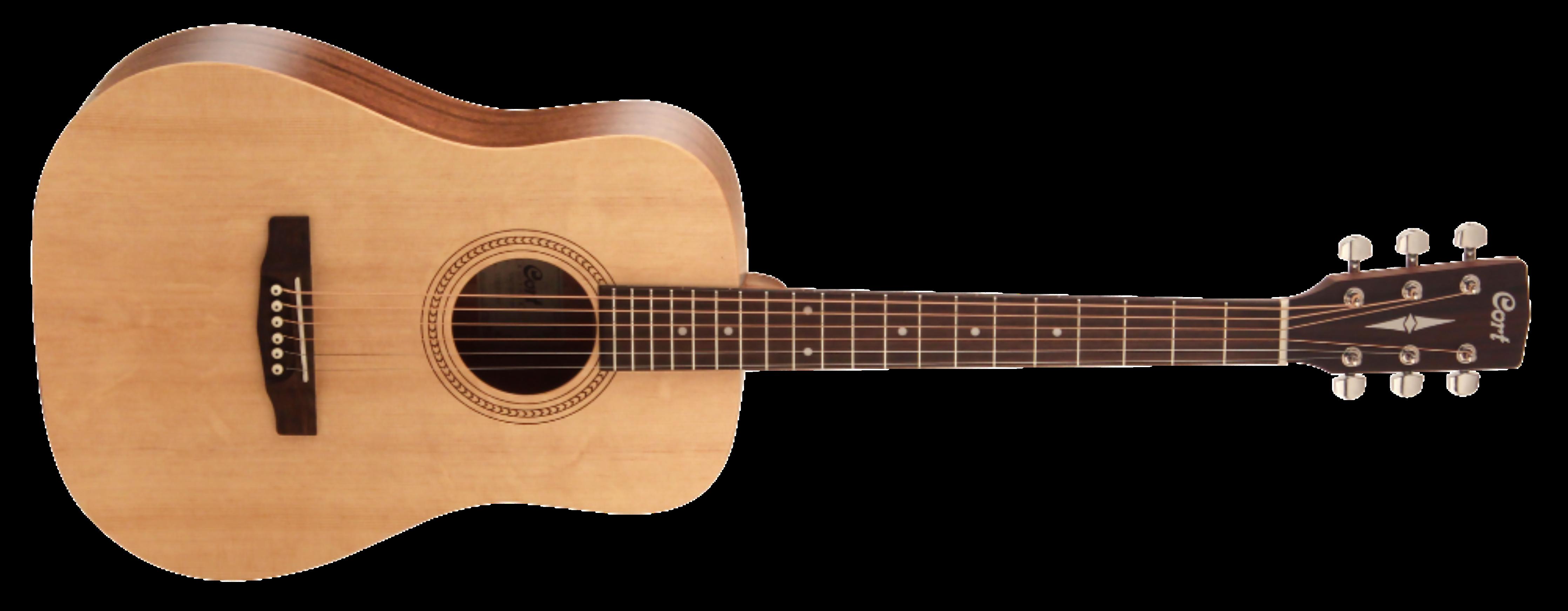 Gitarre Cort Earth 50 Easy Play